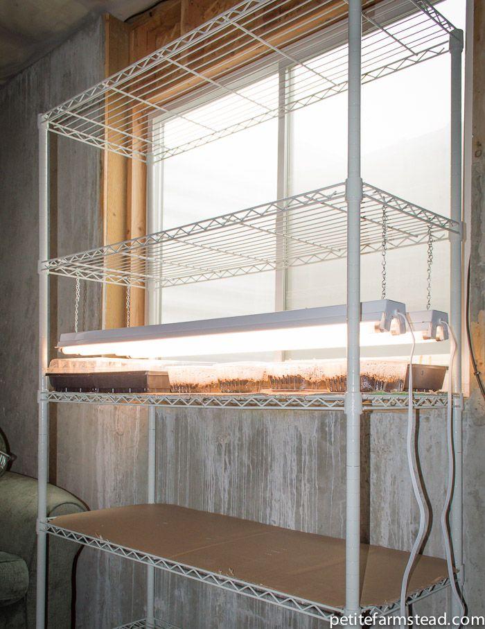1000 images about seed harvester on pinterest stoner. Black Bedroom Furniture Sets. Home Design Ideas