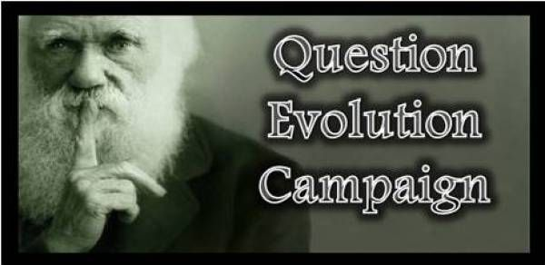 Is Darwin's theory of evolution a theory about everything or about nothing?