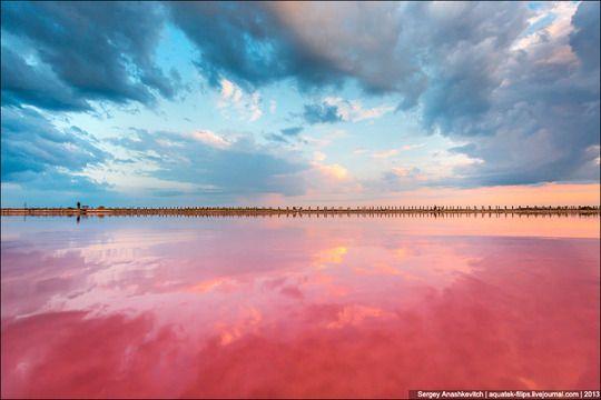 ウクライナ本土とクリミア半島の間にある干潟、シヴァシュ湖。このピンク色は塩水中で繁殖する藻類に含まれるベータカロチンに由来しているらしい。