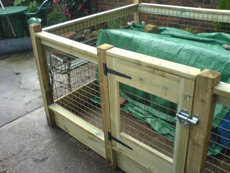 21 best images about outdoor guinea pig enclosure on for Outdoor guinea pig cage