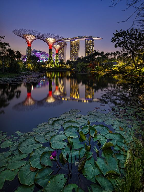 Gardens by the Bay, Marina Bay, Singapore ~ Photo by WK Cheoh on 500px