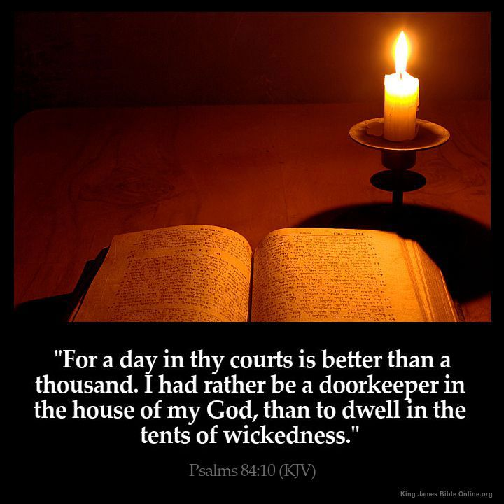 Daily Bible Quotes Text: 25+ Best Ideas About Daily Bible Verses On Pinterest