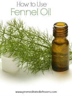 how to use fennel powder