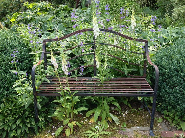 gorgeous bench with foxgloves