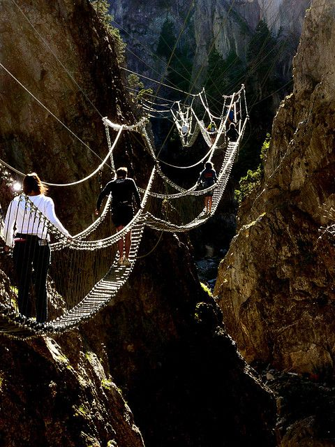 Tibetan bridge in Piedmont, Italy. My fear of heights will never allow me to experience this, but it would be awesome!