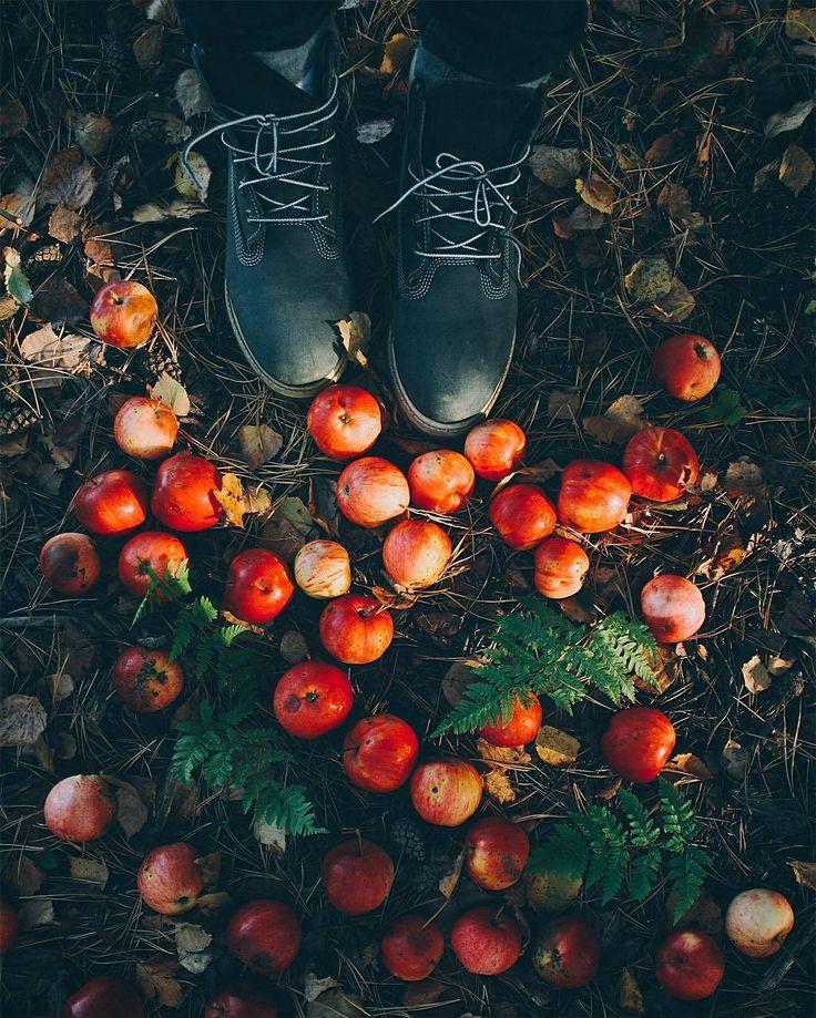 Autumn air weather