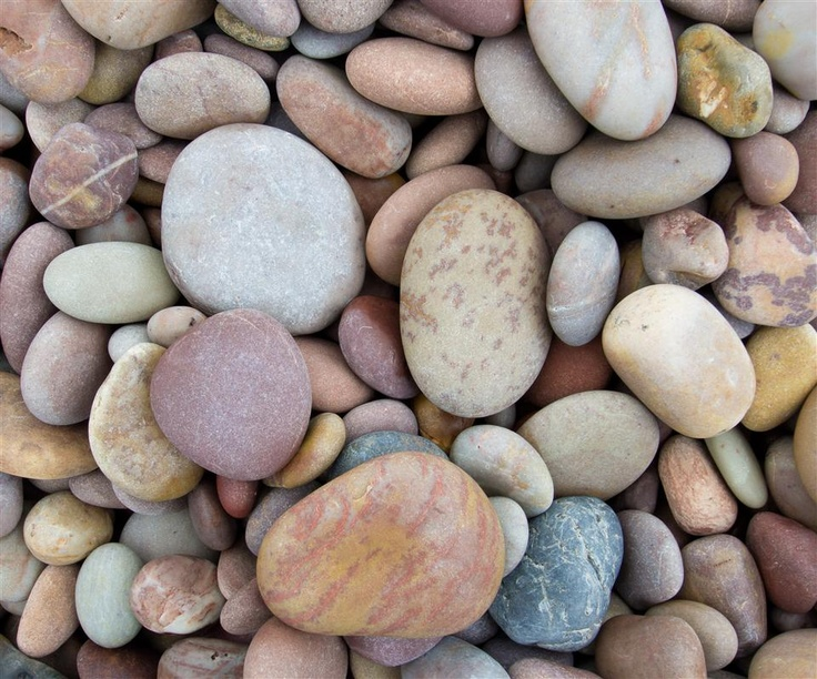 Pebbles from Budleigh Salterton