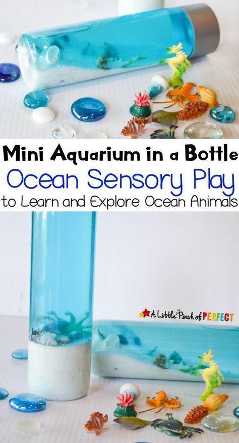 Ocean Aquarium Sensory Bottle! A colorful visual way to explore the ocean! A great addition to a preschool or kindergarten ocean unit!