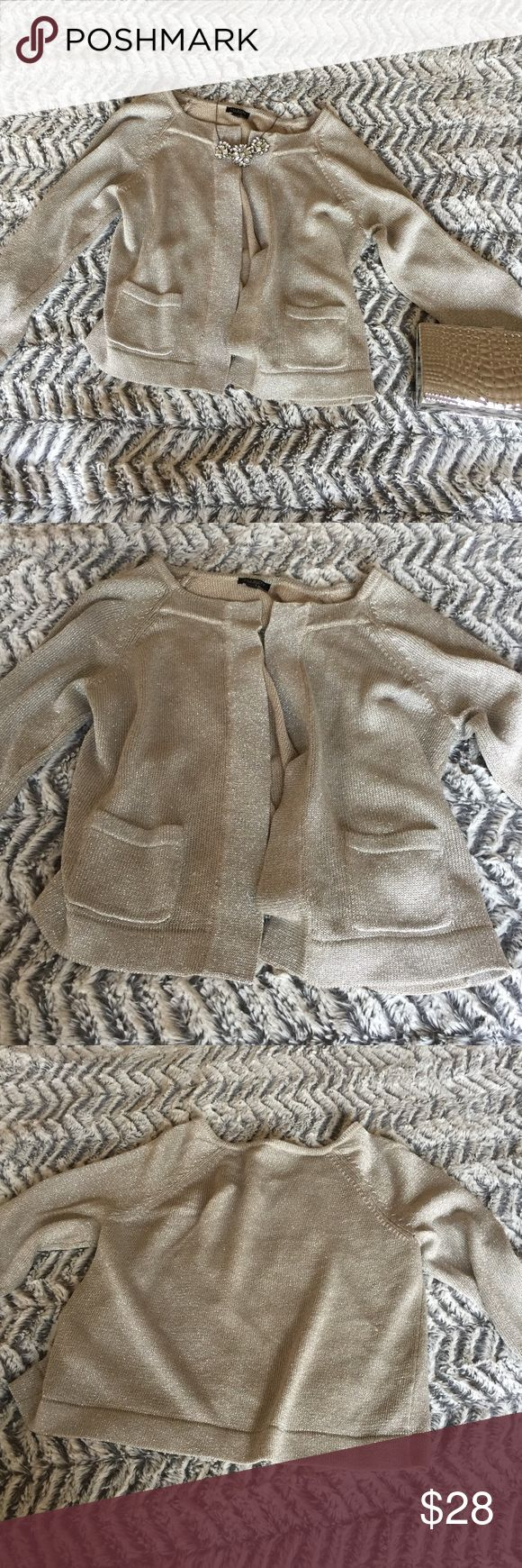 ⚡️SALE⚡️ Talbots Silver 3/4 Sleeve Cardigan Talbots 3/4 Sleeve Sweater with hook and eye around collar. Excellent condition. Perfect for evenings/ weddings- sparkly silver fabric will keep you warm and stylish!💰SAVE 10%- Bundle w other items from my closet! ✅Reasonable offers considered- Make me an offer! 🔝Top Rated Seller- 5 Star Average Reviews. 📦Ships same or next day! Talbots Sweaters Cardigans