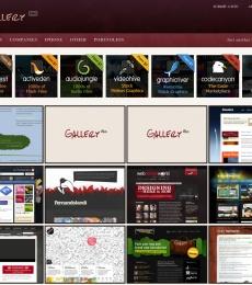 gallery-pro-screenshot