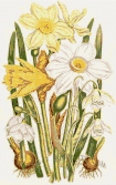 Daffodils and snowdrops cross stitch kit or pattern   Yiotas XStitch