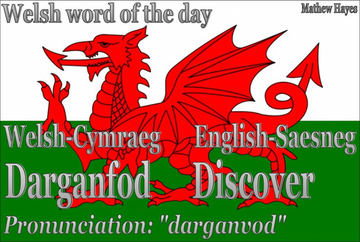 Welsh word of the day: Darganfod/Discover