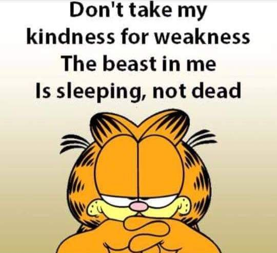 Kindness According to Garfield #1