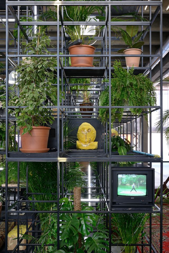 When Rashid Johnson became fascinated with human structures being taken over by vegetation, he made it his artistic vision.