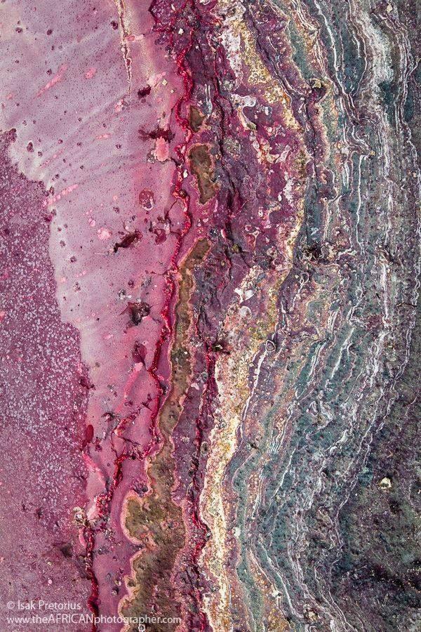 Salt Deposits , Meru National Park. Kenya Isak @PretoriusWildlifePhotography