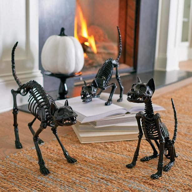 Who knew the bad luck of black cats was bone deep? Prop this terrifying trio of Skeleton Cats to cross the path of all who enter your garden gate simply hide them where they're least expected: inside the entertainment console, beneath a chair, or high above the party crowd on a shelf. With one each, sitting, crouching, and standing, your scare potential is nearly endless. Hinged jaws and posable tails ramp up mumblings to all-out squeals of delight (think fake mice, ...