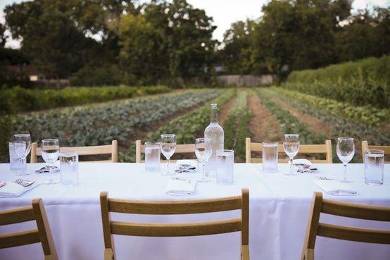 Wedding+Ideas:+lifestyle-table-vineyard