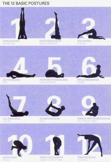 Twelve basic poses Sivananda Yoga