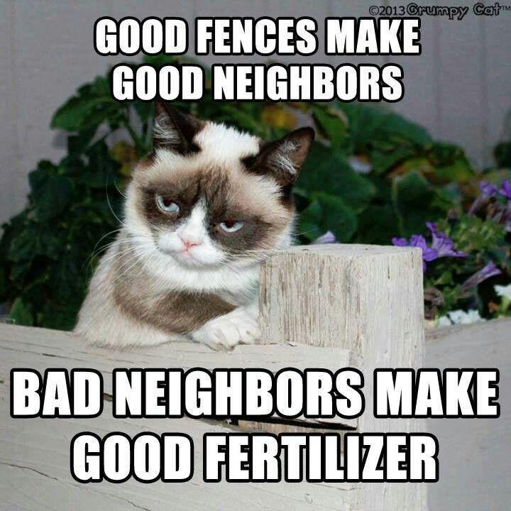 f10dcf3081e2facb73e0727df54bfb0b so funny funny memes 43 best my neighbor's images on pinterest funny shit, funny,Funny Neighbor Meme