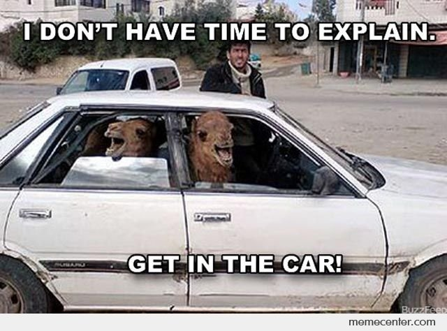 Funny Car Memes: 17 Best Images About Car Dealer Memes And Signs On