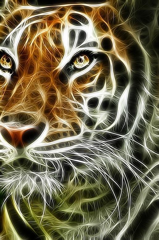 Tiger https://www.pinterest.com/Yaninavalos/fractales/