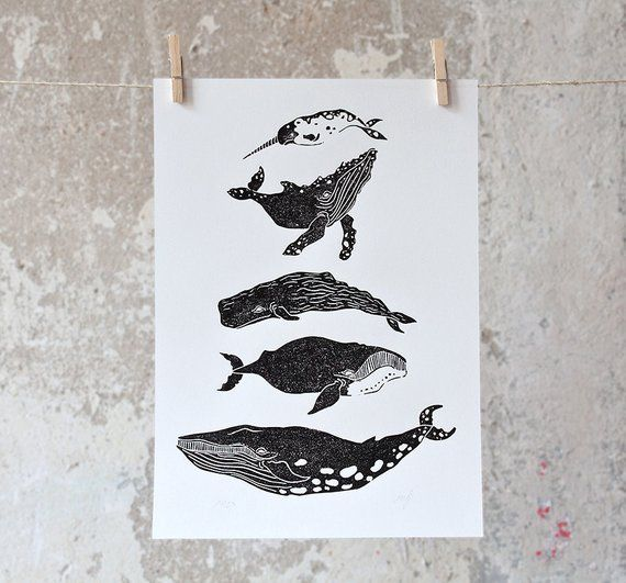 Pin On Prints