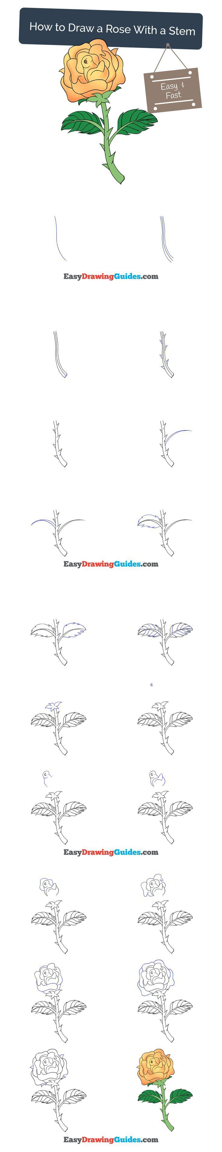 Best 25 easy to draw rose ideas on pinterest how to for How to draw a rose step by step for beginners