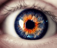 Rare Eye Color | Rare Eye Colors Rare eye color