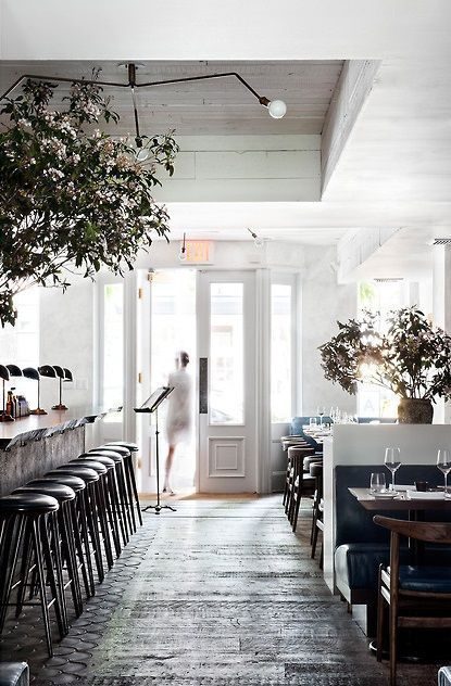 Love The Idea Of Trees In Living Room With Fresh White Walls Musket New York