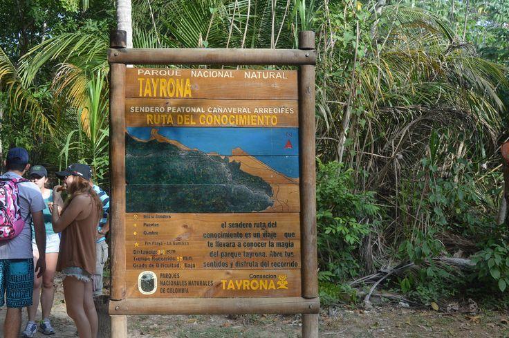 Uno de los lugares más majestuosos que puedes visitar, sin lugar a dudas es el Parque Tayrona, esuna de las joyas ambientales que no solo es …