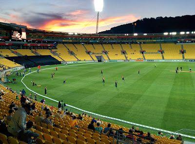 Cricket at Westpac Stadium   Jenn's Travelogue Blog: Down Under - Day 13