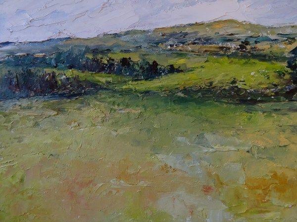 'Green Fields, Corrimbla' www.niamhslack.com
