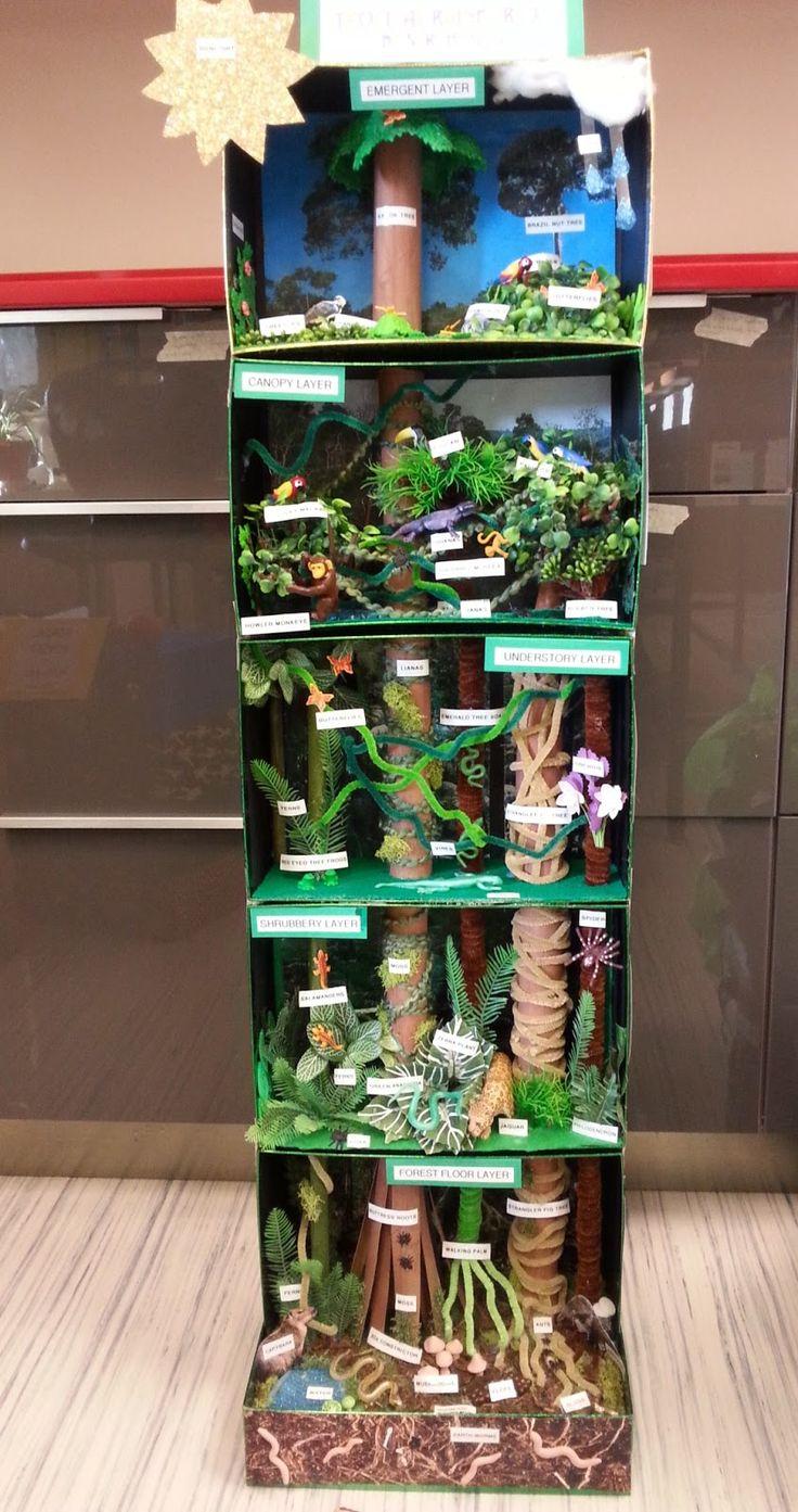 Ev für Wald verwenden (Krone, Stamm oberirdisch/Waldboden, Wurzel/Erdreich --> 3 Schachteln)