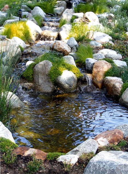 25 best ideas about small backyard ponds on pinterest for Small yard ponds and waterfalls