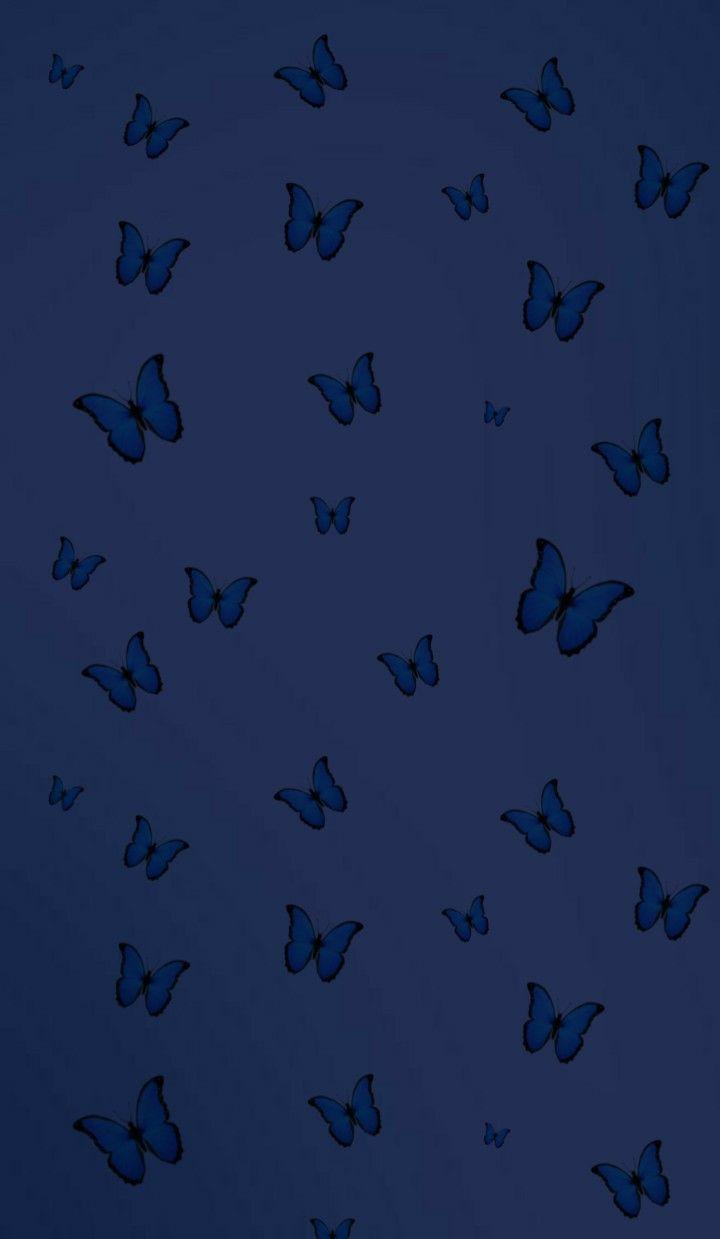 Blue Dark Aesthetic | Blue butterfly wallpaper, Blue ...