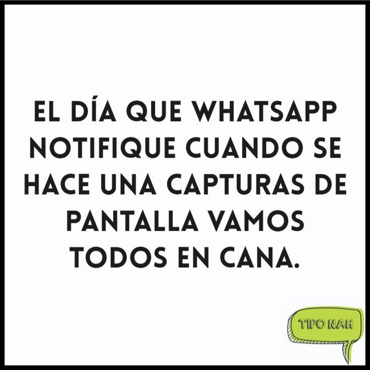 El día que WhatsApp notifique cuando se hace una capturas de pantalla vamos todos en cana.  #tipo #nah