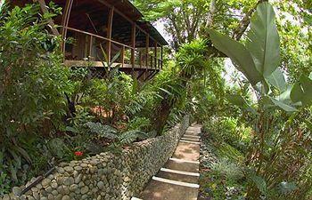 Aguila de Osa Inn - drake bay costa rice, great reviews on tripadvisor!
