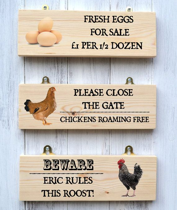 95 best Chickens ~ Signs images on Pinterest Chicken coops - free for sale signs for cars
