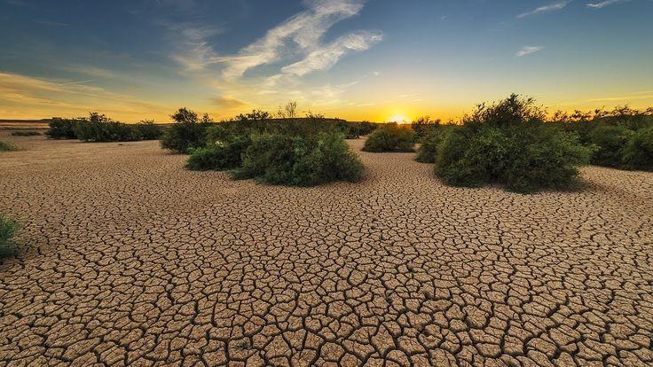 Consecuencias del Efecto Invernadero - TvAgro por Juan Gonzalo Angel