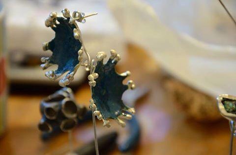 Aros sección Cladonia Inspirados y nacidos en la Selva Valdiviana