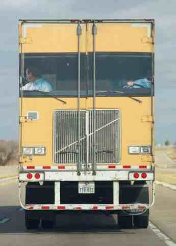 This is actually the back of a truck!!  Imagine seeing this on the interstate!!