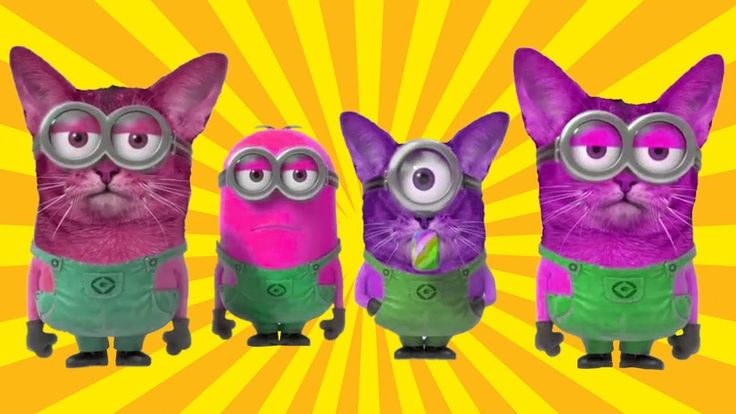 Minions Banana Song - Funny Cat Minions Videos For Kids - Learn Colors w...