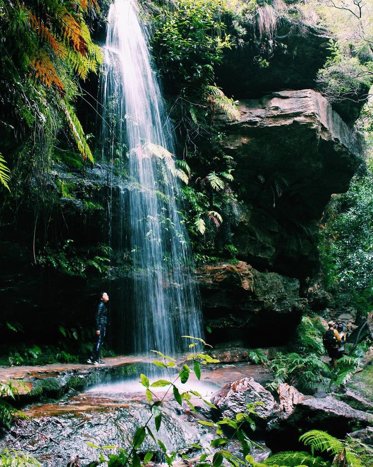 Soaking it all in  . @realignmyotherapy #waterfall #grandcanyontrail #trees #greenery #blackheath #mountains #bluemountains #rainforest #gorge #canyon #streams #hiking #hikingadventures #explore #travel #travelnsw #travelaustralia #australia #wander #wanderlust #wanderaustralia #hike #adventure #photography #travelphotography