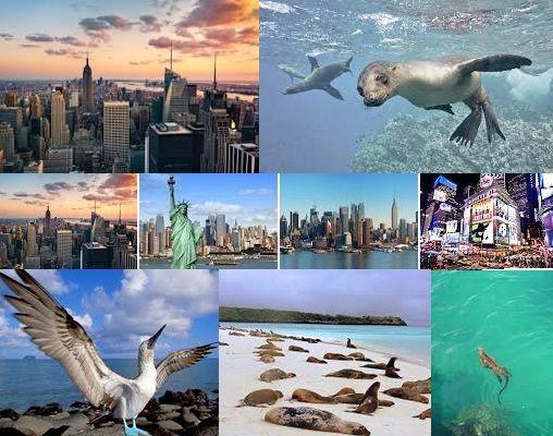 Vuelos a Ecuador Pasajes a las Islas Galápagos desde Nueva York