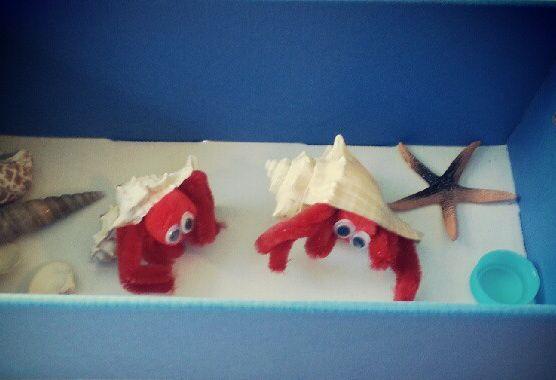No Maintenance Hermit Crab Craft