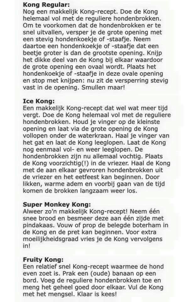 Recepten Kong hond