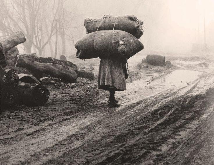 """Σ' ένα χώρο λασπωμένο, γυναίκα φορτωμένη, ξύλα που περιμένουν κι αυτά τη μεταφορά τους, όλα δίνουν ακριβώς αυτή την αγωνία του ανθρώπου να επιζήσει στις σκληρές συνθήκες της μικρής πόλης"""" ."""