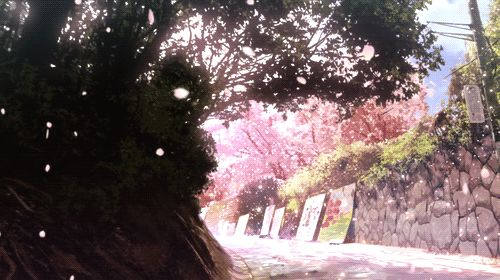 95 best GIF images on Pinterest Animated gif, Anime scenery and - cherry blossom animated