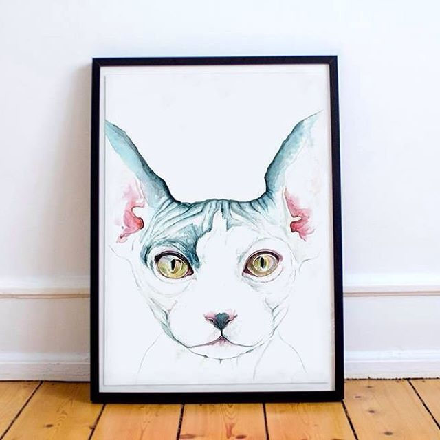 😽 #sphynx #watercolor #watercolour #aquarel #aquarelle #aquarellepainting #paint #painting #print #poster #cat #neko #winsorandnewton #illustration #sphynxcat #turquoise #pink #habologique #watercolorpainting @fanboysyndicate