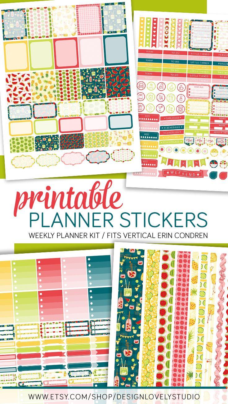 Summer Planner Sticker Kit, Erin Condren Summer Stickers ...